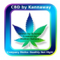 Kannaway Pure Gold Full Spectrum Cannabidiol Öl