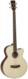 Tanglewood TWTAB1CE Electro-Acoustic Bass