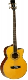 Tanglewood TWB155A Electro-Acoustic Bass
